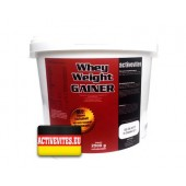 Activevites Whey weight Gainer 5000г
