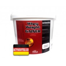 Activevites Whey Weight Gainer 2500 гр.